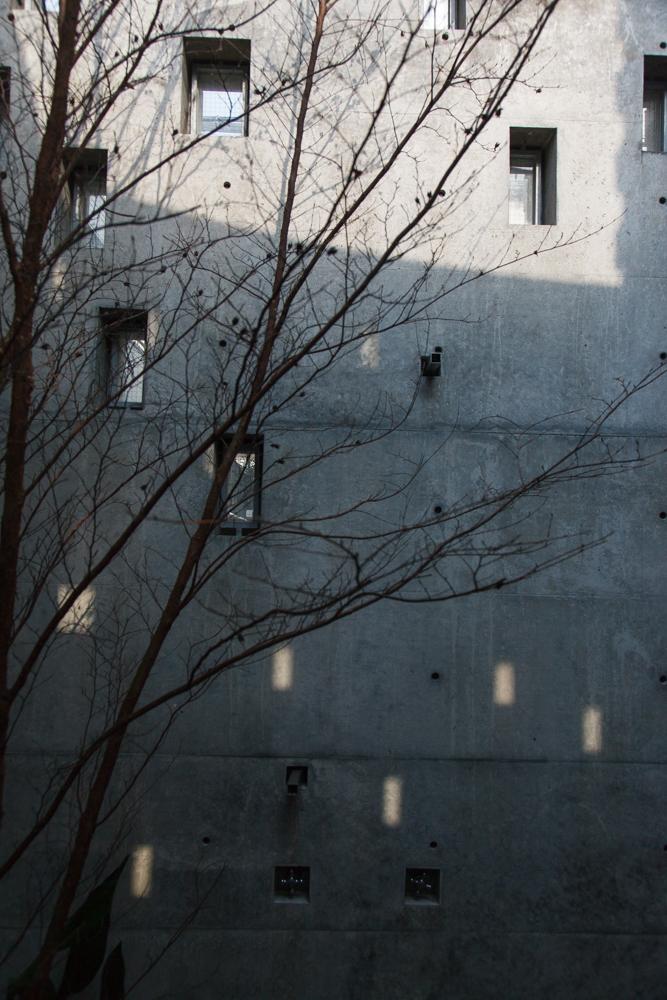 西原の壁013